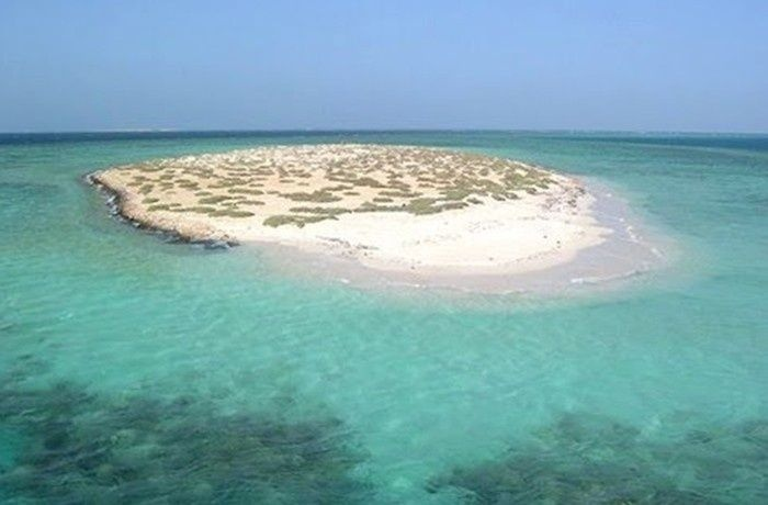 Snorkeling Trips From Marsa Alam