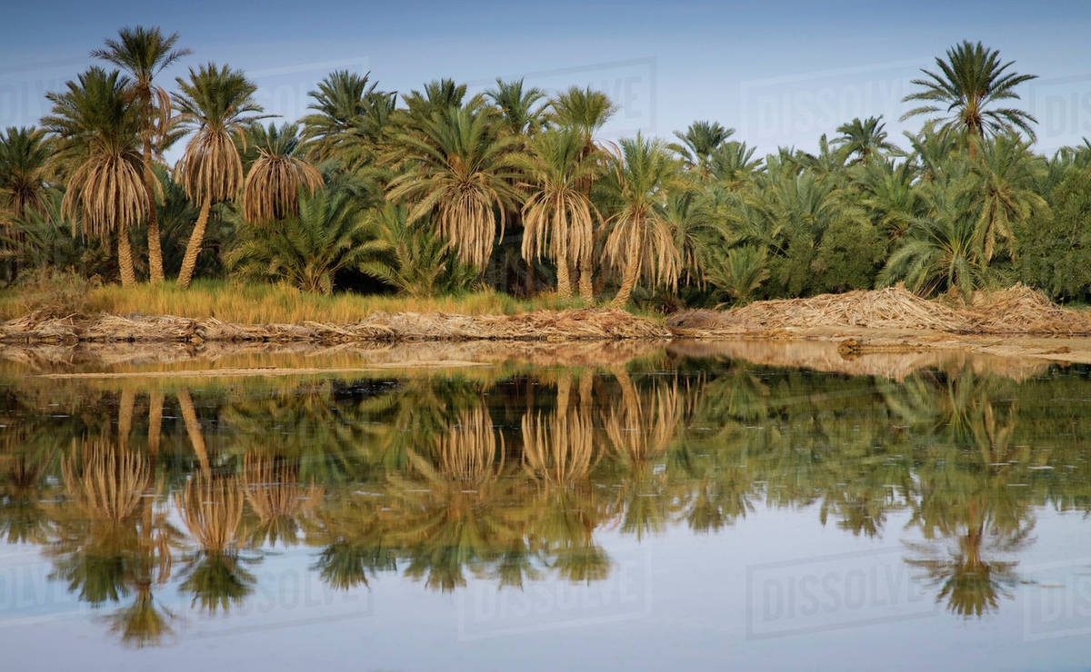 Top 10 Attractions in Siwa oasis