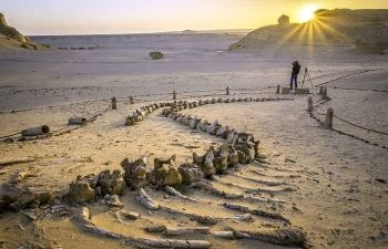 10 day Egypt Itinerary Nile cruise and White desert tour