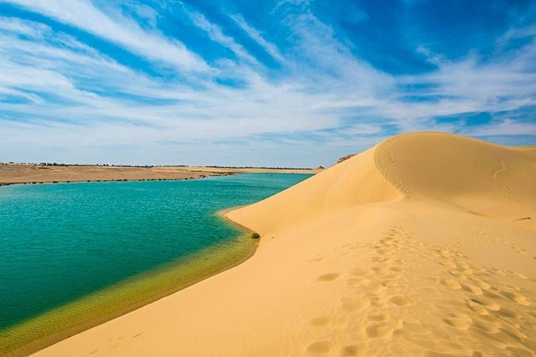 Two day trip to fayoum oasis and wadi el Hitan from Cairo
